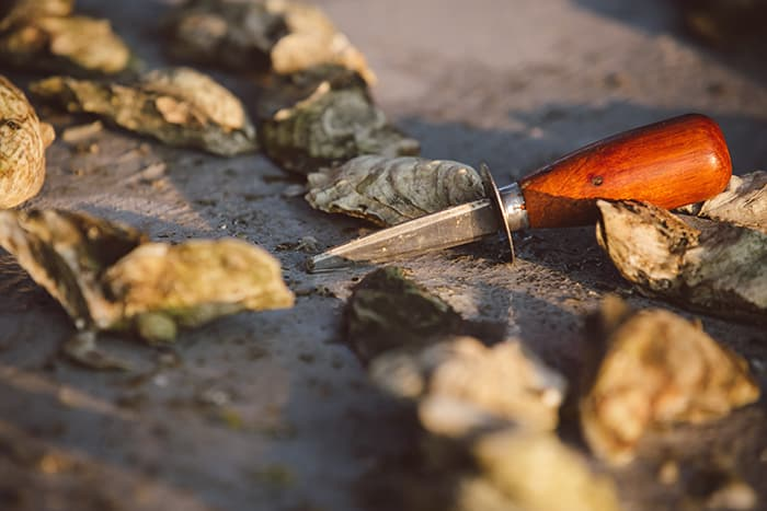 An authentic Lowcountry oyster roast by PPHG Events is a perfect way to welcome wedding guests to Charleston, SC | The River House at Lowndes Grove Plantation | Photo by Amelia and Dan